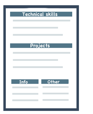 best cv format for programmer job